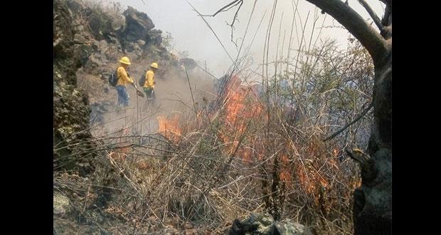 Incendios disminuyen en Puebla por lluvias