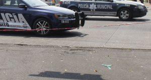 Patrullas de policía de tránsito municipal de Puebla