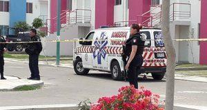Niña pierde la vida tras ataque de perro pitbull en Tehuacán