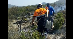 Protección Civil estatal reporta 11 incendios forestales activos