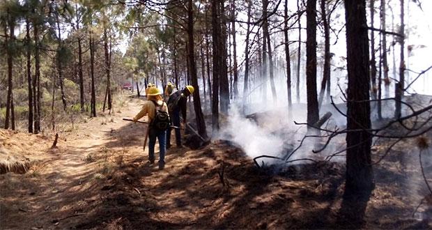 Sólo hay 2 incendios forestales activos en Puebla, informa PC