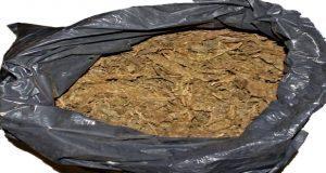 Aseguran 21 kilos de posible marihuana en colonia Tres Cruces