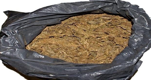 Aseguran 21 kilos de posible marihuana en colonia Tres Cruces. Foto: Especial