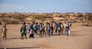 9 mil migrantes pasaron por el Cuerno de África y península Arábiga