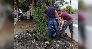 Estudiantes reforestan áreas verdes de bachillerato en Tepexi