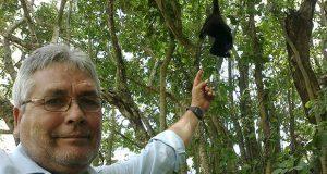 Asesinan a ambientalista que protegía a monos aulladores en Tabasco
