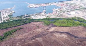 Pemex entrega a ASEA estudio ambiental para construir Dos Bocas