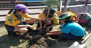 Scouts y gobierno estatal reforestan Eco Parque Metropolitano