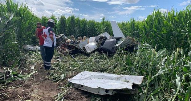 Desplome de avioneta deja cuatro muertos en plantío de Chihuahua
