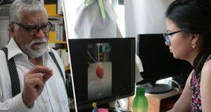 Corazón, primer órgano que se daña al padecer diabetes: experto