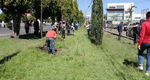 Siembran más de 3 mil árboles en la vía Quetzalcóatl