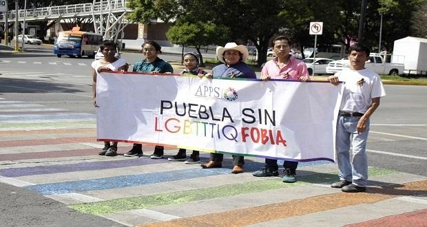 Discriminan a comunidad Lgbttt al pintar de blanco paso peatonal, acusa APPS