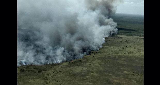 Incendios consumen más de 2 mil hectáreas en reserva de Sian Ka'an