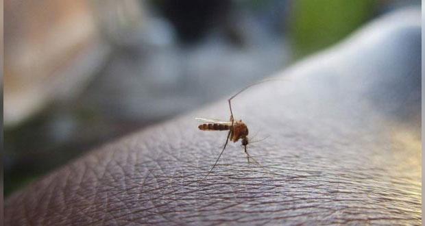 Filipinas declara alerta nacional por aumento en casos de dengue