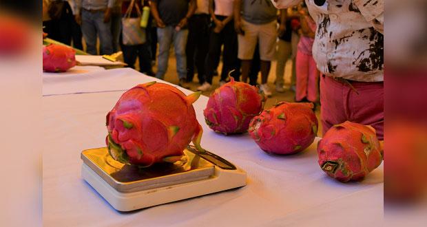 Se celebra la IV Feria de la Pitahaya en Santa Inés Ahuatempan