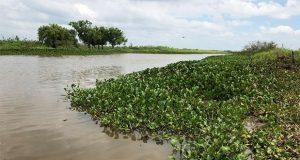 Semarnat abrirá foros para debatir conflictos medio ambientales