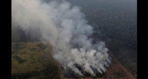 G7 destinará 20 mdd para combatir incendios en el Amazonas
