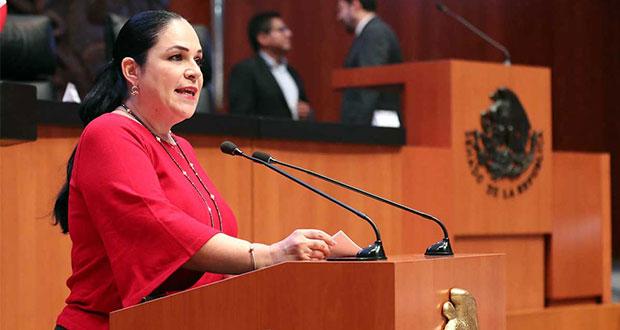 Eligen a Mónica Fernández para presidir Senado; Batres la desaprueba