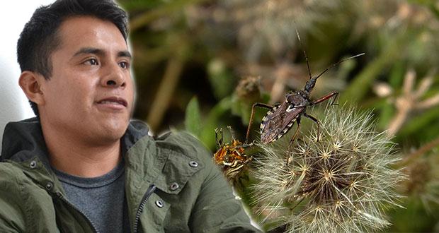 Egresado de la BUAP gana Premio de Entomología por su tema de tesis