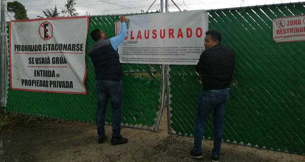 Medio Ambiente clausura tala de árboles en Lomas de San Juan