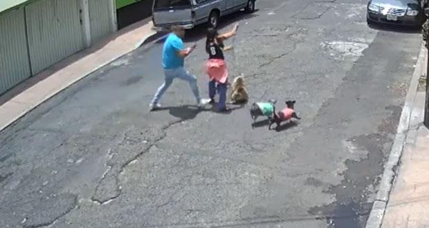 Mujer camina con su perro cuando es tacleada por hombre en CDMX