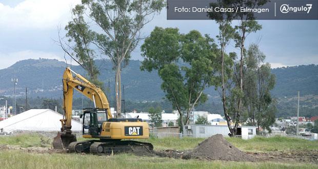 """Congreso revisará permisos """"ilegales"""" para talar árboles en Lomas de San Juan"""