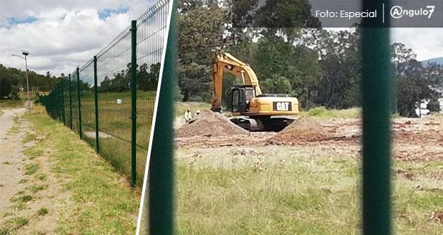 Talan 100 árboles para construir mil 004 departamentos en cerro de Amalucan