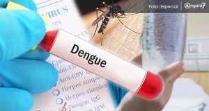 Confirman 536 casos de dengue en Puebla; en dos semanas aumentan 47%