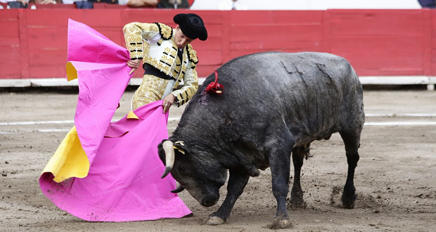 59% a favor de prohibir corridas de toros en México: Reforma