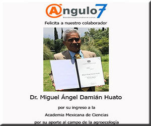 Miguel Angel Damian Huato