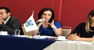 Decisión de Barbosa, futuro de los arcos de seguridad: PAN en Congreso. Foto: Especial.