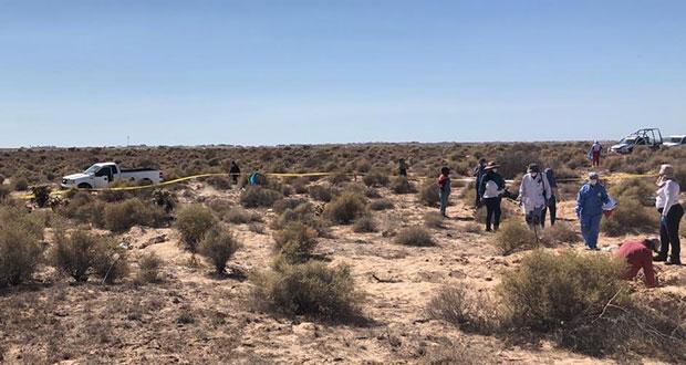 Colectivo Mujeres Buscadoras halla 13 cuerpos en Sonora