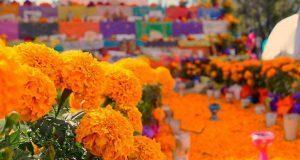 Fnerrr convoca a concurso de ofrendas en Bachillerato Benito Juárez