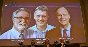 Dan Nobel de medicina a estudio sobre cómo células perciben oxígeno