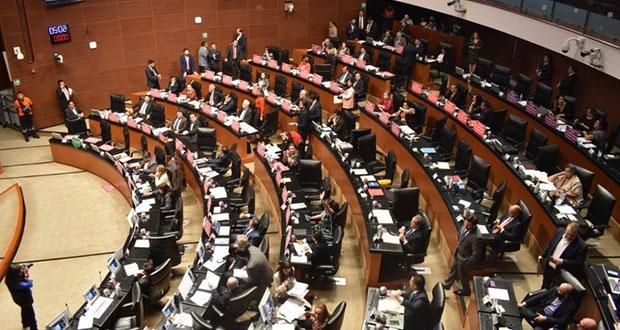 En Senado, frenan que Rosario Piedra asuma CNDH y repondrán elección