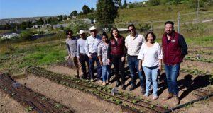 Presentan avances de huertos urbanos en Canoa y Azumiatla