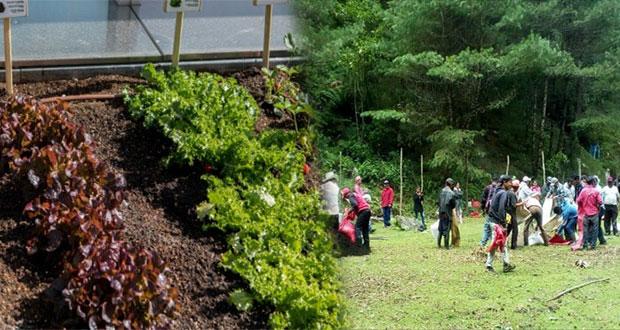 desarrollo-sostenible-ecologico-huertos