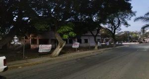 Medio Ambiente clausura trasplante de árboles en Tehuacán