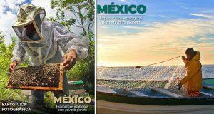 Aprovecha el puente y ve a la exposición fotográfica en Chapultepec