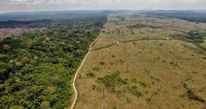 Alerta la NASA sequia del Amazonas debido a actividades humanas