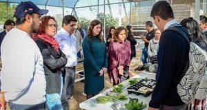 Ayuntamiento busca reducir su huella ecológica