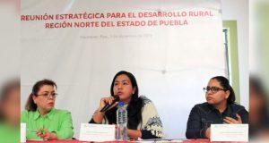 Dialoga SDR con productores de Sierra Norte por políticas del campo
