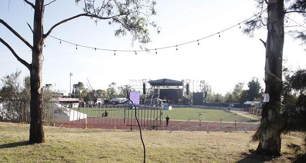Festival Catrina no dañó árboles: Secretaría de Desarrollo municipal