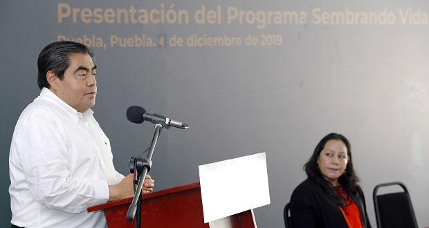 Gobierno instalará destiladora de mezcal en Mixteca poblana