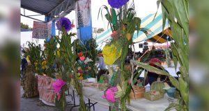 """En Ixcaquixtla, celebrarán """"noche del maíz"""" el 12 de diciembre"""
