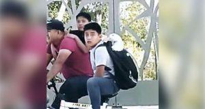 Niño saca a pasear a su pato y lo acusan de robo; gobierno desmiente