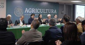 Productores de biofertilizante hacen plan de trabajo con Federación