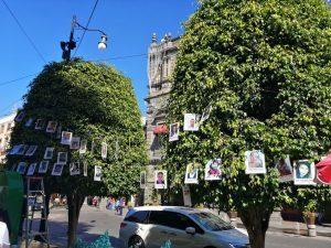 """Colocan el """"árbol de la esperanza"""" con 58 fotografías de desaparecidos"""