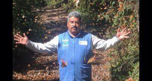 En Michoacán, desaparece Homero Gómez, defensor de mariposa monarca