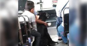 Perro corre tras camión donde iban sus dueños y chofer lo deja subir